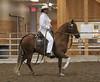 2221 stallions bozal 17