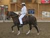2224 stallions bozal 17