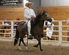 2243 stallions bozal 17