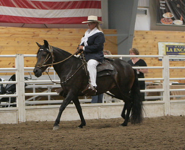 Class 36, Amateur Owner To Ride