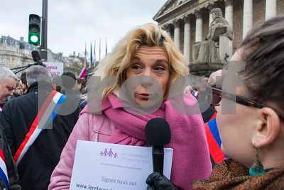 Paris, France, Crowd, French Conservatives Opposing Gay Marriage, Demonstration outside Senate Building,