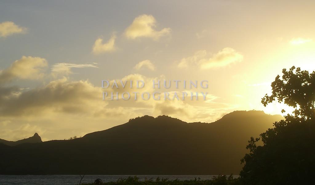 Golden Sunset View