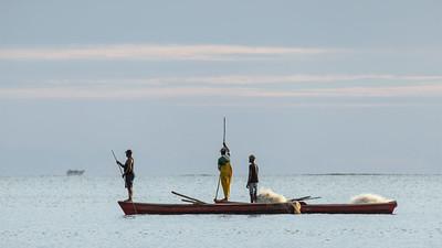 Fiji Scenic