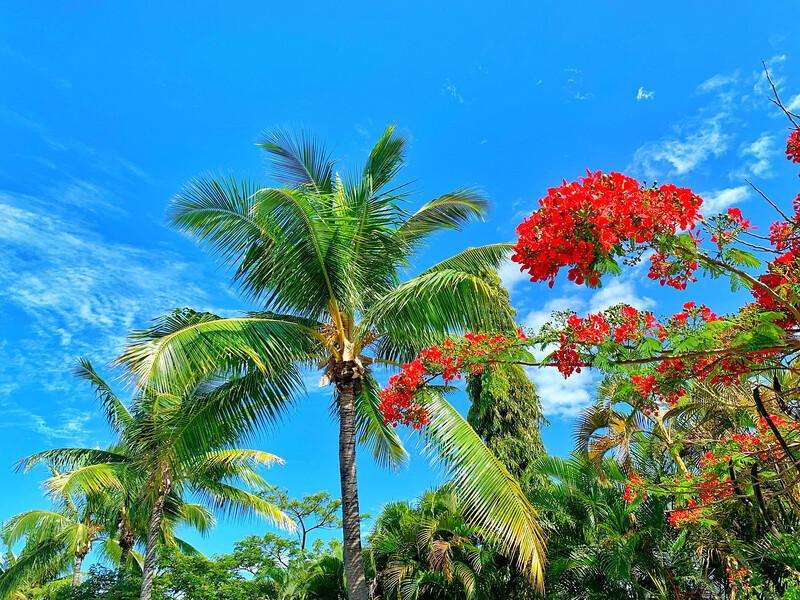 best luxury resorts in fiji