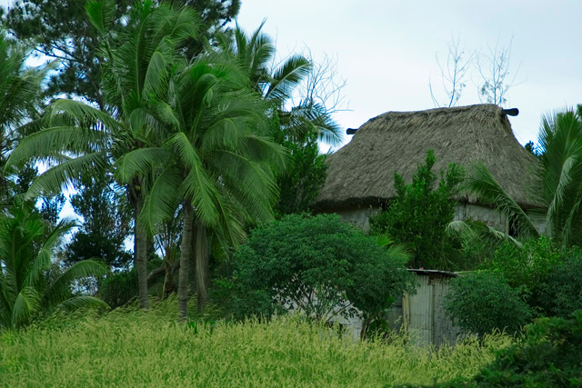 Fiji House