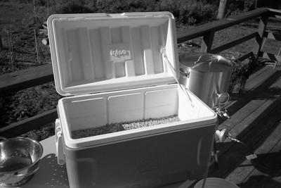 Kodak Plus-X (exp 12/85)  D-76, Olympus XA (ei 125)