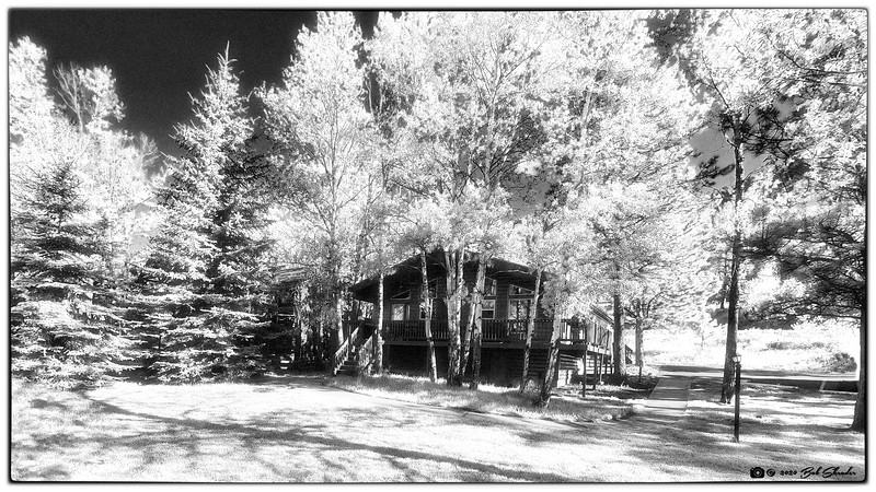 Riverview Pines Cabin
