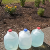 //www.dreamstime.com/royalty-free-stock-images-blue-plant-fertilizer-liquid-image15675209