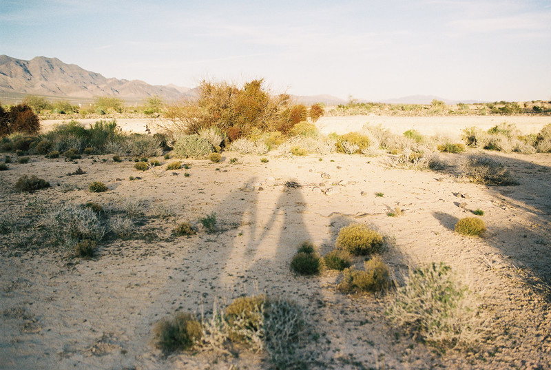 Las Vegas Desert Elopements