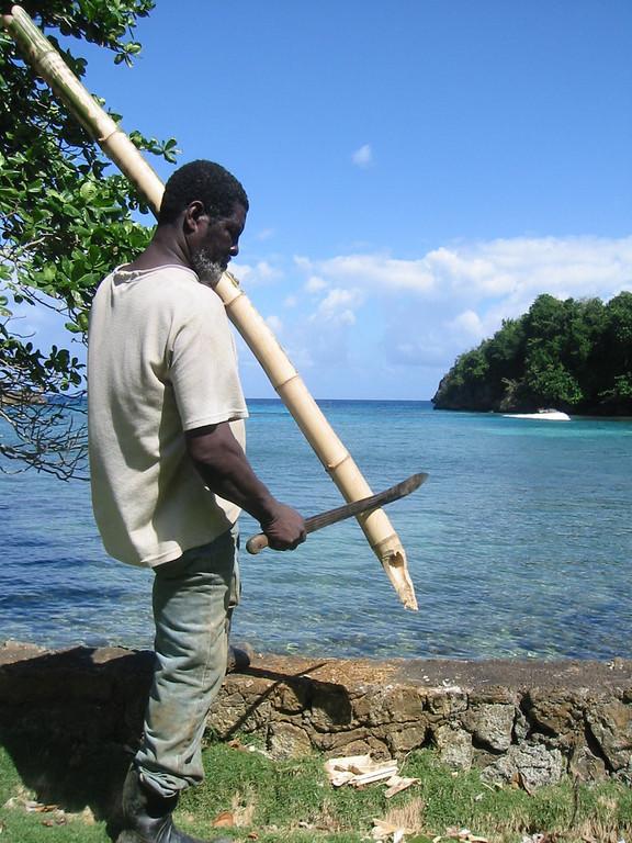 Forever Eden, Jamaica, 2004