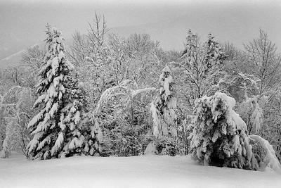 Full On Winter