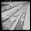 Snowy railcars.  Laramie, WY