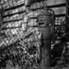 hydrant. Shot on Kodak T-Max 100 (120 Gelatin Silver)