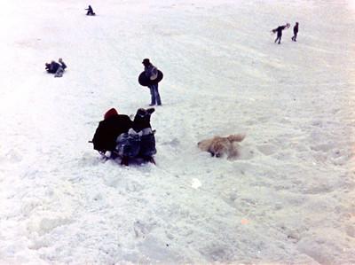 1987 12 05 - Sledding at Timberline Park 007