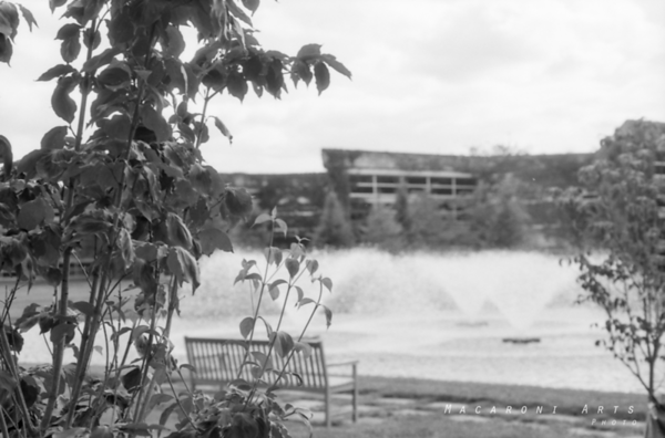 Fountains at the COB