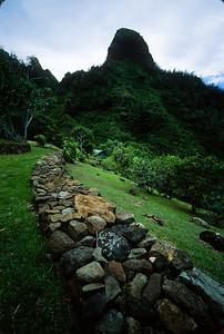 Makana Mountain, Limahuli Garden Fujichrome Velvia 50