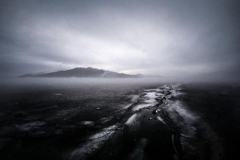 Frozen morning in the fog