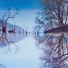 Lohas Reflections - 로하스