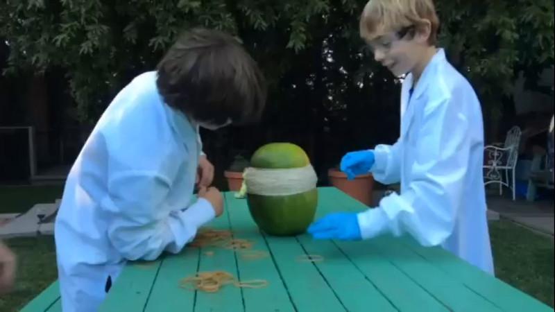 Gammon Rubber Band - Watermelon Project
