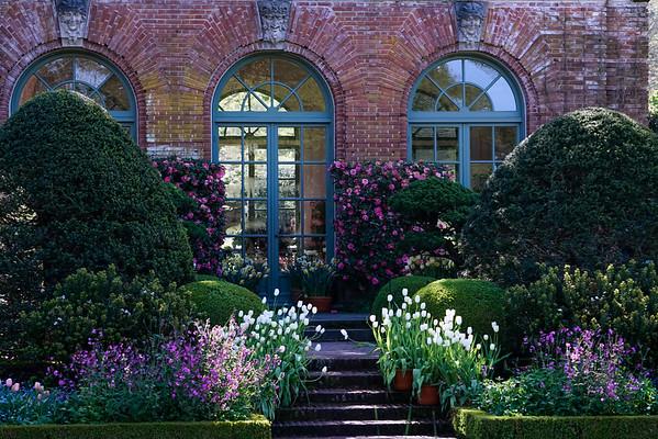 Filoli Gardens 03-29-15