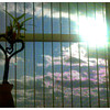 2011-12-08_14-31-30_632_edit0