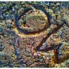 2011-12-26_07-00-28_417_edit0