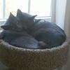2012-04-12_13-06-05_287