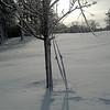 IMG_20121230_175921