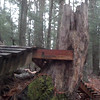 2012-12-02_11-50-48_935