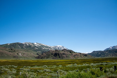 Meadow across from the Marine Corp Mountain Warfare Training Center.