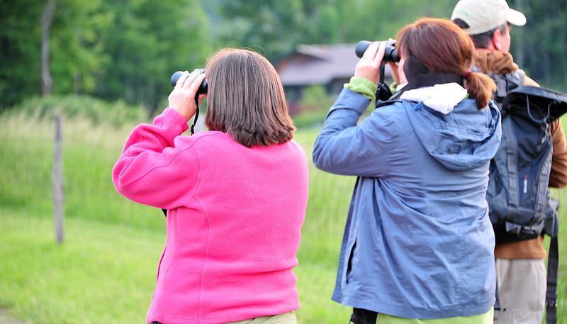 birding-festival-2012-050