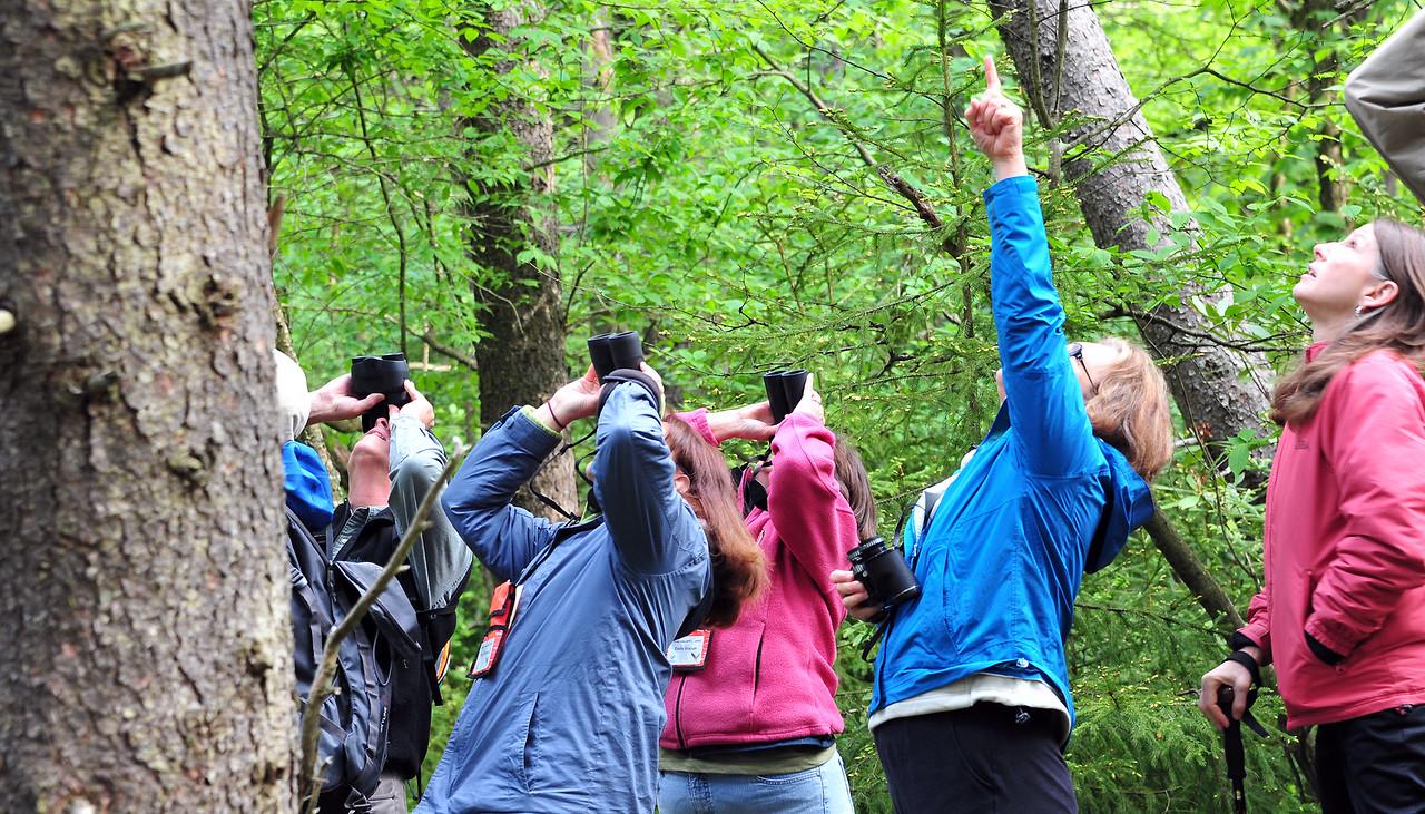 birding-festival-2012-070