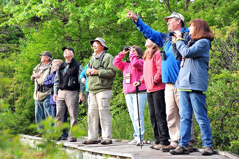 birding-festival-2012-069