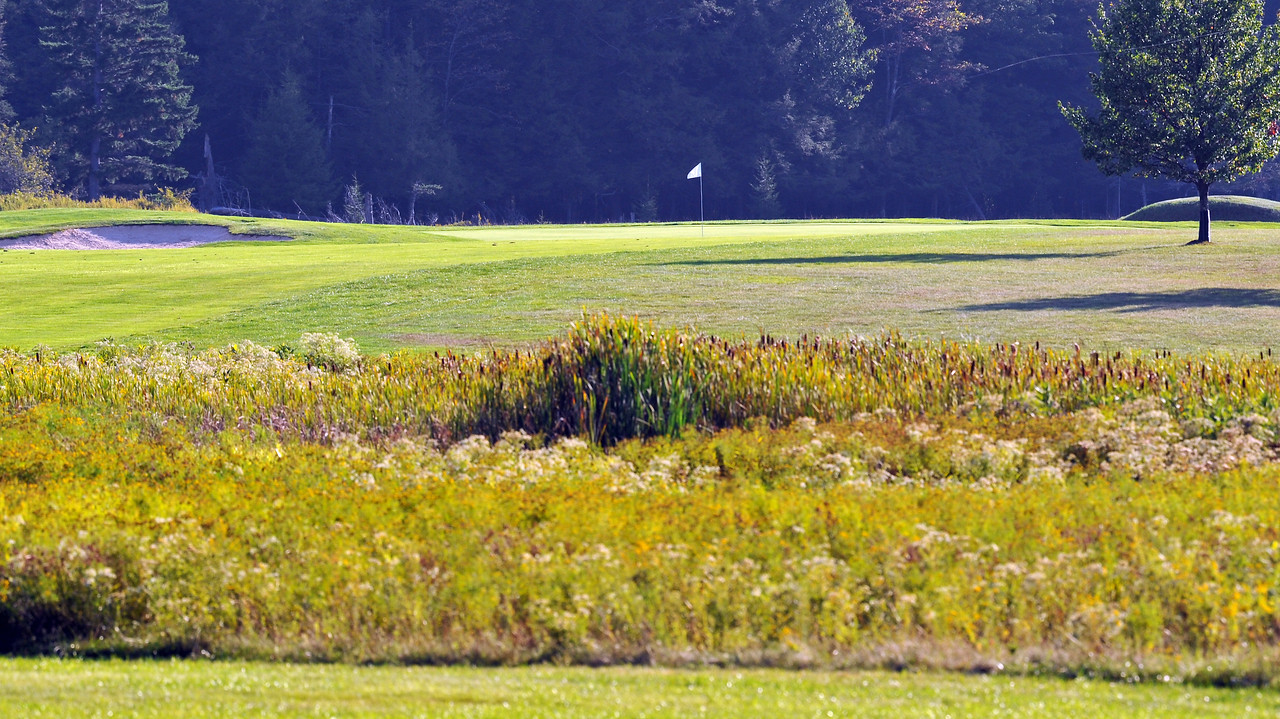 golf-scramble-46