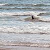 surfing-021