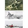 surfski-history