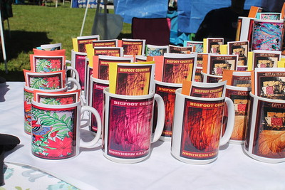 Multiple booth sold various items at Saturday's festival. (Natalya Estrada - The Times-Standard)
