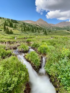 Beaver Ponds in Mosquito Gulch