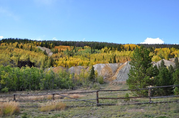 Fall colors in French Gulch.