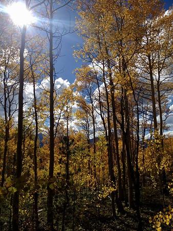 Autumn on Boreas Pass