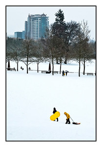 Yellow Sled - Downtown Bellevue Park