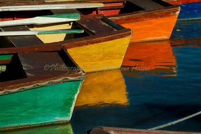Colored row boats