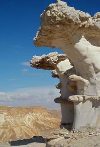 Avdat Plateau Negev Desert