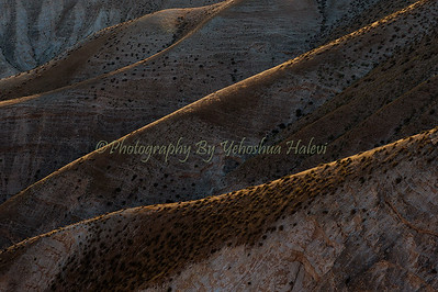 Judean Desert Wadi Kelt