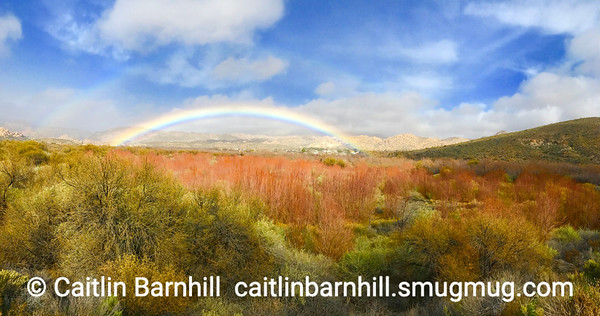A rainbow detour by Caitlin Barnhill
