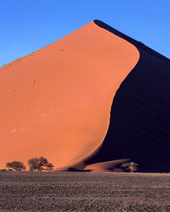 Dunes of Sossusvlei in the Morning, Namib-Naukluft Park, Namibia
