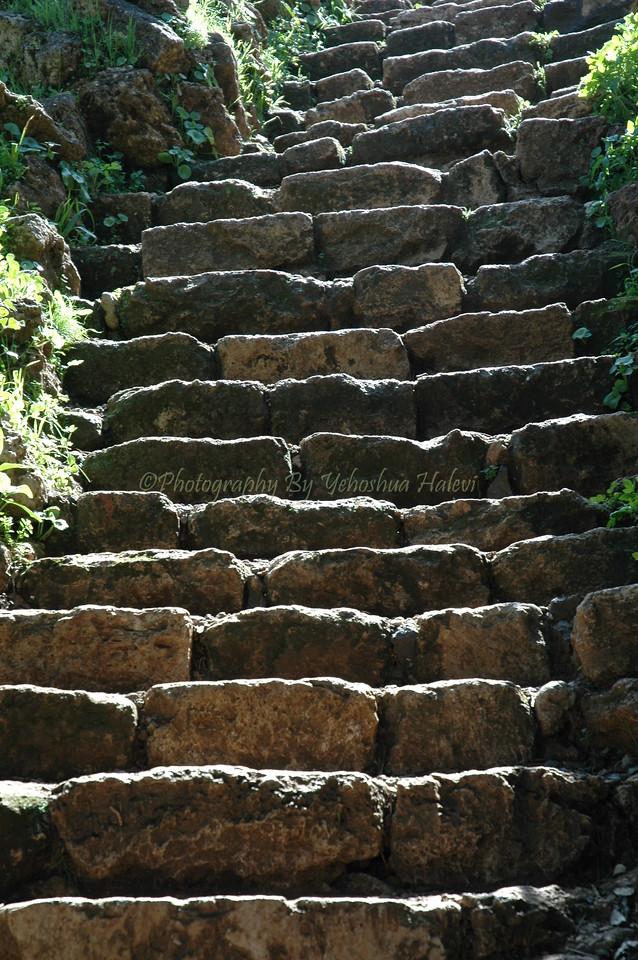 Stone Steps 005