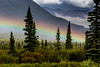 A Touch of Rainbow - Denali