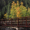 Fall Colors at Guanella Pass Colorado, 9/29/2013