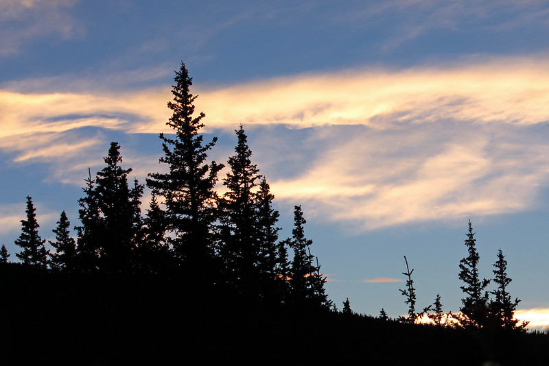 Trees at Sunset, Echo Lake, Colorado 9/29/2013